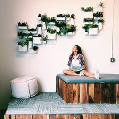 Image result for plant walls in houses