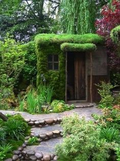 Mossy by sylvia alvarez. Almost hidden shed