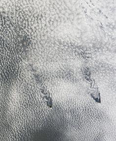 Vórtices de Von Karman más de las islas de Juan Fernández en el Océano Pacífico (NASA, 2013)