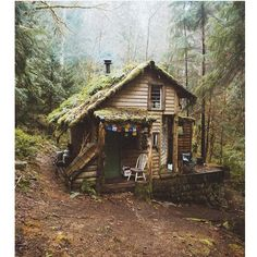 """Cabin in the woods of Washington. """"Son of man, how is the wood of a vine different from that of a branch from any of the trees in the forest? Ezekiel Photograph by © Cabin In The Woods, Cottage In The Woods, Witch Cottage, Wood Cottage, Forest Cottage, Forest Cabin, Forest Mountain, Forest House, Cabins In The Mountains"""