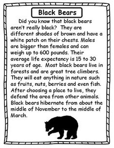 Students will learn all about black bears and polar bears. Reading passages, compare/contrast, fact/opinion and more! Reading Resources, Reading Skills, Guided Reading, Bears Preschool, Preschool Ideas, Bear Facts For Kids, Fact And Opinion Worksheet, Read Naturally, Art History Major