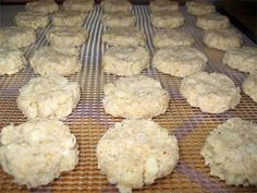 Coconut Macaroons and other dehydrator recipes -GF and vegan. Sounds awesome, but dehydrate for 15 hours? What& that going to do to the electricity bill? Canning Recipes, Drink Recipes, Jar Recipes, Freezer Recipes, Freezer Cooking, Cooking Tips, Coconut Macaroons, Dehydrated Food, Dehydrator Recipes