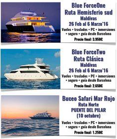 #buceo #submarinismo #maldivas #marrojo #blueforceone #blueforcetwo  Ofertas de submarinismo Mar Rojo para el Puente del Pilar (10 octubre) y Maldivas en febrero 2016. --- Ofertes de submarinisme Mar Rojo pel Pont del Pilar (10 octubre) i Maldives al febrer 2016.  Info: http://www.campuvic.com/viatges/sortides-organitzades-en-grup_cpc_203_.html