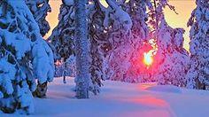 Kuvahaun tulos haulle lappi talvi