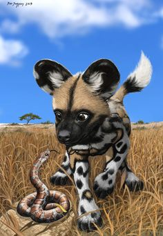 African Wild Dog Pup and Baby Snake Compare Spots by Psithyrus.deviantart.com on @deviantART