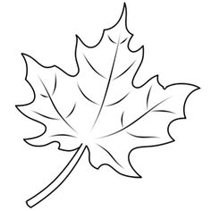 Learn how to draw a leaf, one of the maple variety - drawn with a simple stick-like framework, in this simple step by step cartoon drawing lesson.