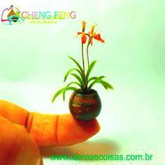100 Pcs Seeds Mini Bonsai Orchid Seeds Indoor Home Miniature Flower Pot Garden Plants Four Seasons Beauty