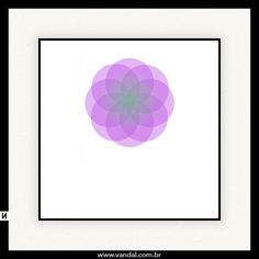 Mandala, indiano, cores, yoga, flores