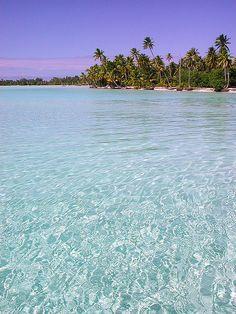 Aqua waters in Bora Bora, French Polynesia...my honeymoon?  I think yes.