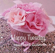 Greetings For The Day, Tuesday Greetings, Good Morning Greetings, Good Morning Tuesday, Good Morning Good Night, Happy Tuesday, Flower Background Wallpaper, Flower Backgrounds, Morning Pictures