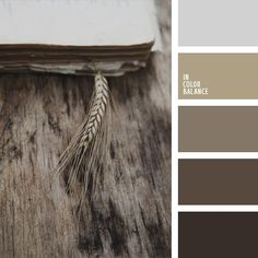 """Monochrome combination of cold shades of brown you can use in the design of the room in the style of """"modern"""" or """"fusion"""". But we recommend to use it only in large spaces, such as the dark colors require space."""