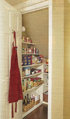 under stair pantry or cleaning closet.