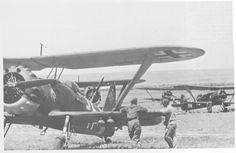 FalkeEins - the Luftwaffe blog: Henschel Hs 123