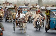 What Is Donkey Racing?  Overview of the race Tradition Who can take part in the race Where do the races happen ? Location Pros and Cons Popularity of the race Negative aspects of the race. Donkey, Pakistan, Street View, Racing, Pictures, Image, Italia, Running, Photos