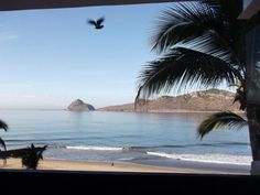 Best spot on the beach of Mazatlan, Mexico. Where I will be getting my tan on in 1 week~ cmon 12 day vaca!