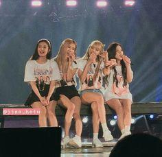 Concert Blackpink in Jakarta 2019 Yg Entertainment, Forever Young, South Korean Girls, Korean Girl Groups, K Pop, Divas, Black Pink Kpop, Hip Hop, Blackpink Photos