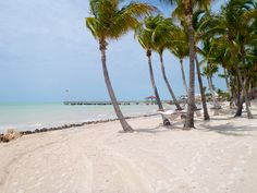 Blog post at Wander The Map : Key West is so much more than partying and beaches--ok, well those do happen to be top activities on the island, but I want to share with yo[..]