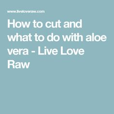 How to cut and what to do with aloe vera - Live Love Raw