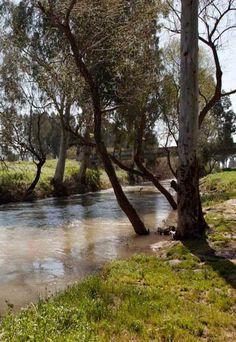 ~J pretty....Jordan River, Israel