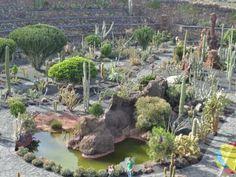 Jardín de Cactus, Lanzarote www.lanzaroteinternacional.com