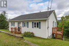 Newfoundland, Homes, Houses, Newfoundland Dogs, Home, Computer Case