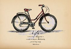 Albert Einstein. Life is like riding a bicycle -