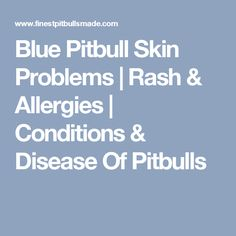 Blue Pitbull Skin Problems | Rash & Allergies | Conditions & Disease Of…