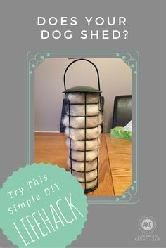 LIFEHACK: If you have a dog that sheds a TON of hair (we're looking at you, Samoyeds, Huskies, and the like), then this DIY Bird Feeder Project is perfect for you.