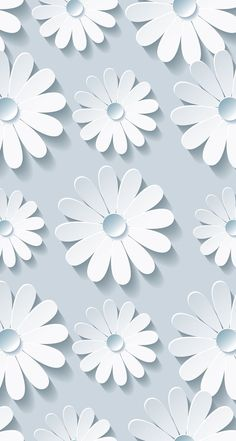 Wallpapers#flowers#white