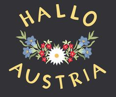 Austria, www.hallo-austria.at Harry Potter Poster, Salzburg Austria, Heart Of Europe, The Beautiful Country, Vintage Travel Posters, Winter Holidays, Wonderful Places, Germany, Austria Travel