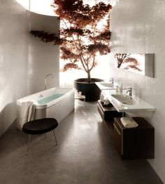 Feng shui principles in this gorgeous bath w/ indoor Japanese maple