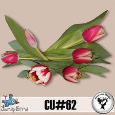 CU#62 by Black Lady Designs