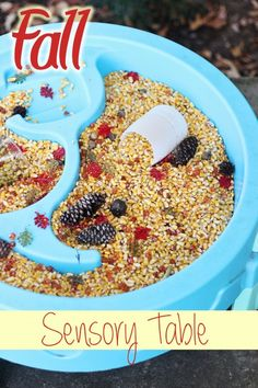 Check out this fall activity for kids - a sensory table with corn, pine cones, and more!