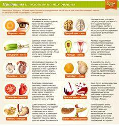 Какая еда полезна для организма. Обсуждение на LiveInternet - Российский Сервис Онлайн-Дневников