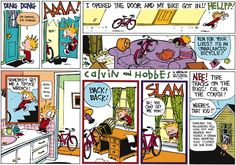 Calvin and Hobbes strip for June 28, 2015