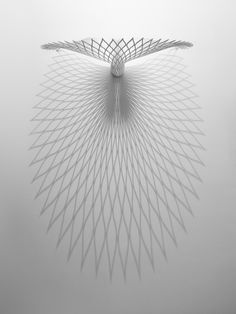 Beautifully Elegant Chair Feathers Out Like a Peacock