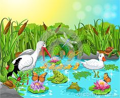 Free puzzles to play online - Animals in the Pond 42 pieces Pond Crafts, Lake Animals, Spring Images, Pond Life, Kids Pages, Bird Theme, Cat Cards, School Themes, Preschool Activities