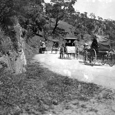 Horse-drawn vehicles travelling to Oakbank Racecourse in the Adelaide Hills (South Australia) for the Easter Racing Carnival in 1912