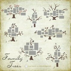 Family Trees for photo walls ~ Great site for vinyl cut files  If you like this pin, then please follow us!  Leave comments!  Or visit us!  www.myhappyfamilystore.com
