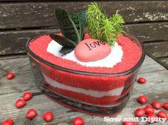 Succulent Dish Garden For Valentines Day -
