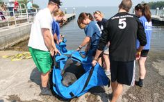 Manatee Release After Rehab #MyFWC