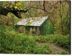 BACK TO NATURE Canvas Print featuring the photograph Back To Nature by Richard Brookes. DESCRIPTION: An old barn being reclaimed by Mother Nature. Found on a walk off the beaten track in North Cornwall.