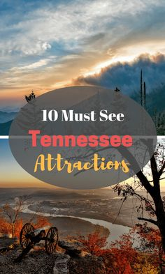 The state of Tennessee has some fantastic spots for your next family vacation. From historical places to spots to enjoy live music and some of the best restaurants you'd ever hope to find, Tennessee has it all! Best Family Vacation Spots, Family Vacation Destinations, Cruise Vacation, Vacation Ideas, Family Travel, Mexico Vacation, Vacation Packing, Dream Vacations, Travel Destinations