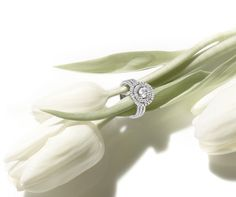 Bague Solitaire - Or blanc, diamant central GIA
