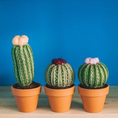Knitted Cactus in a Pot - Flowering - Knit Cactus, Knitted Cactuses, Knitted Cacti, Crochet Cactus, Fibre Cactus, fake plant, Cactus by ThornAndNeedle on Etsy https://www.etsy.com/listing/263853994/knitted-cactus-in-a-pot-flowering-knit