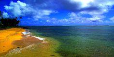 Kauai Beach Panoramic by Dennis Begnoche - Panormic shot of beach in Kapaa Kauai. Click on the image to enlarge.