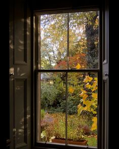 Looking Out The Window, Through The Looking Glass, The Last Leaf, Autumn Scenes, Window View, Foto Art, Through The Window, Cabins In The Woods, Nature Images