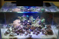 Fluval EDGE Aquarium 23L Marine