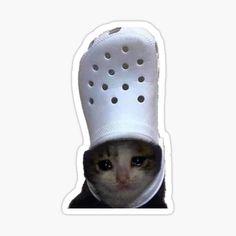 Stickers Kawaii, Meme Stickers, Printable Stickers, Pusheen Stickers, Preppy Stickers, Patrick Star, Shrek Meme, Spongebob, Sad Cat