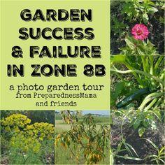 Garden Success And Failure In Central Texas Garden Zone 8b. |  PreparednessMama Garden Pests,